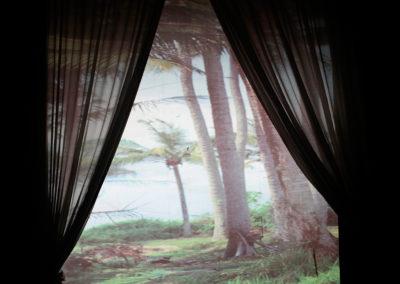 20.Palmtree.sm